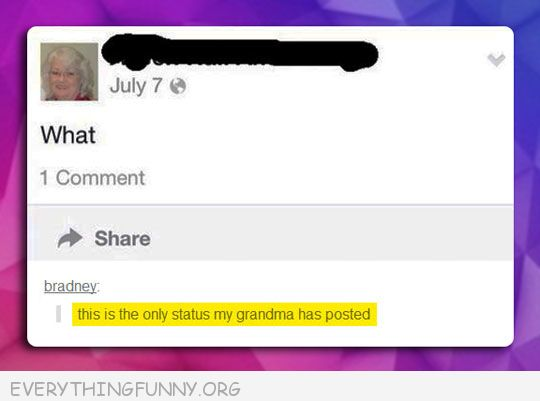 funny facebook status this is the only thing my grandmother posted on facebook what