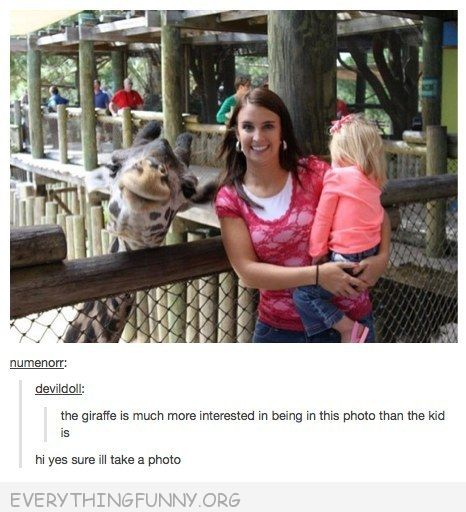 funny tumblr smiling giraffe in picture
