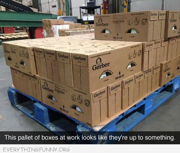 funny caption suspicious boxes in warehouse