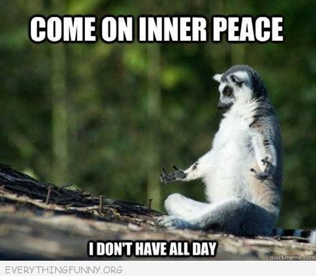 funny caption come on inner peace i don't have all day