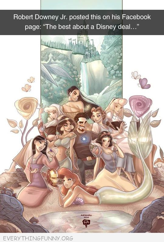 funny facebook status robert downey jr disney surrounded by princesses