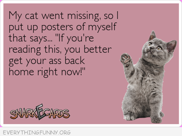 funny ecards lost cat put posters of myself up get home right now