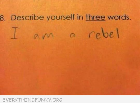 funny decribe yourself in three words i am a rebel
