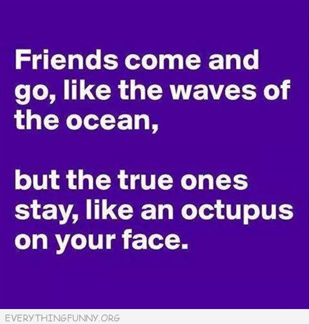 funny quotes friends come  and go likewaves n the ocean true ones stay like an octopus on your face