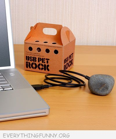 funny gifts and gadgets usb pet rock
