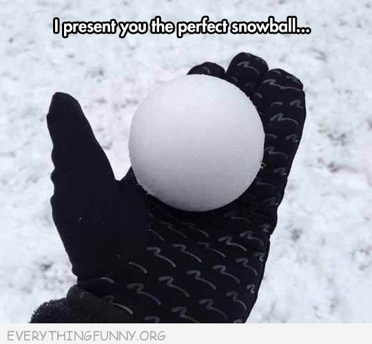 funny photos the perfect snowball oddly satisfying