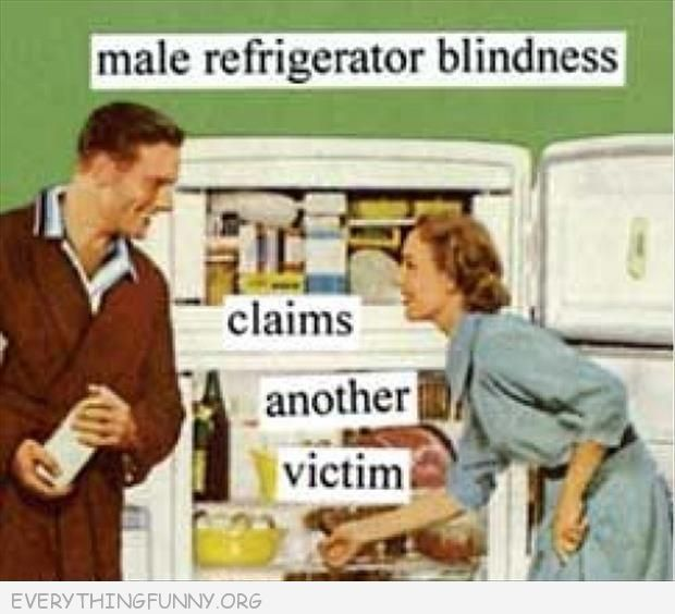 funny cartoon male refrigerator blindness claims another victim