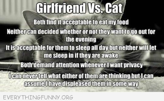 funny girlfriend vs cat treat me the same way
