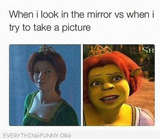 funny cartoon when i look in the mirror vs when i take a picture