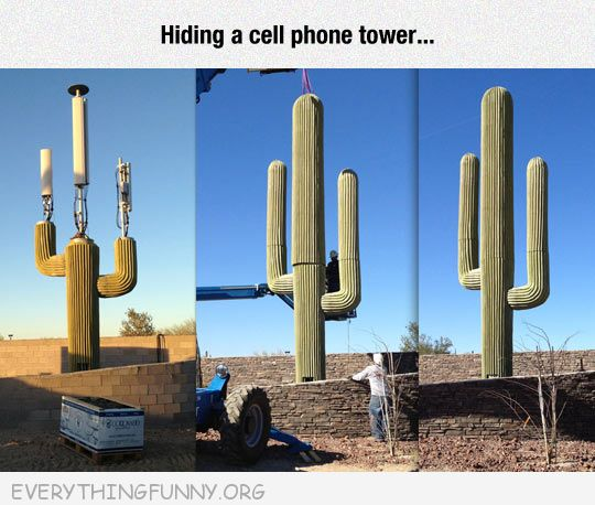 funny  covering cell phone towers with cactus