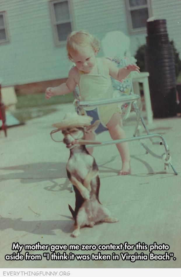 funny caption baby picture dog standing hind legs hat glasses cigar mome gies zero context