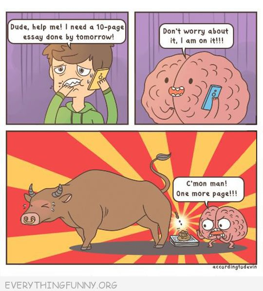 Funny Comic Cartoon Brain Bullsht