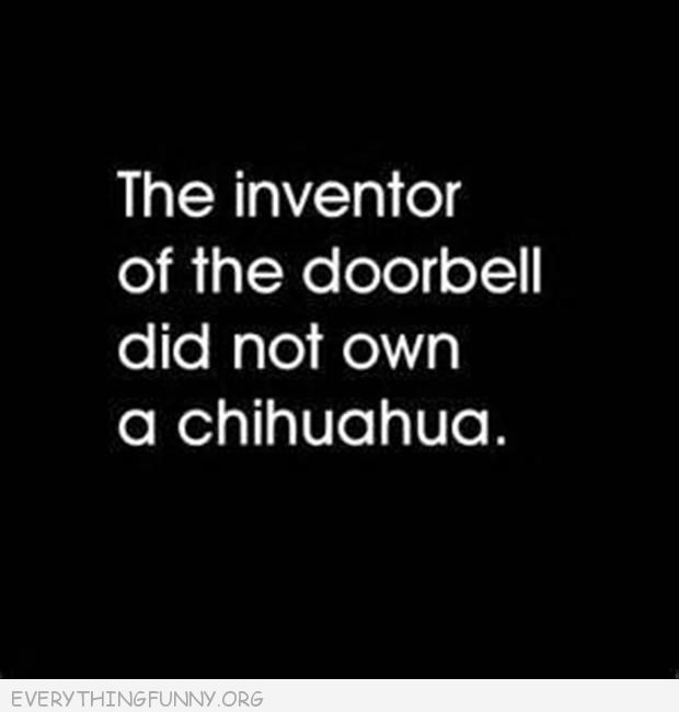 funny quote the inventor of the doorbell did now own a chihuahua