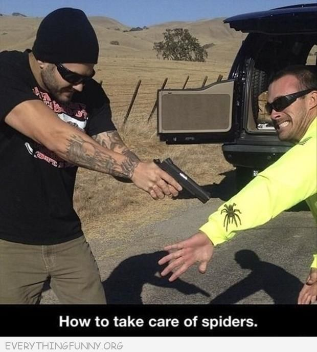 funny how to take care of spiders man points gun at other mans arm