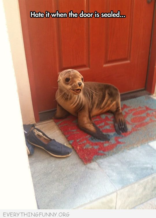funny caption hate it when the door is sealed seal blocking door