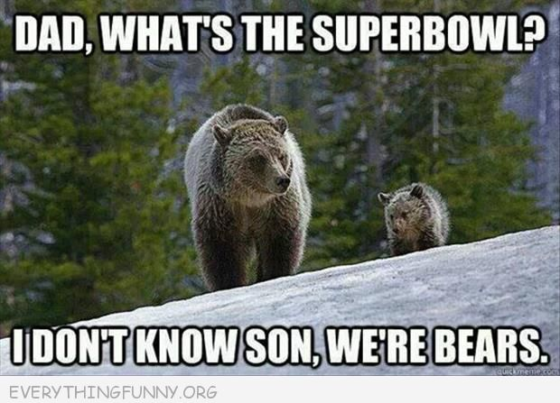 funny dad what's a super bowl i don't know son we are bears superbowl