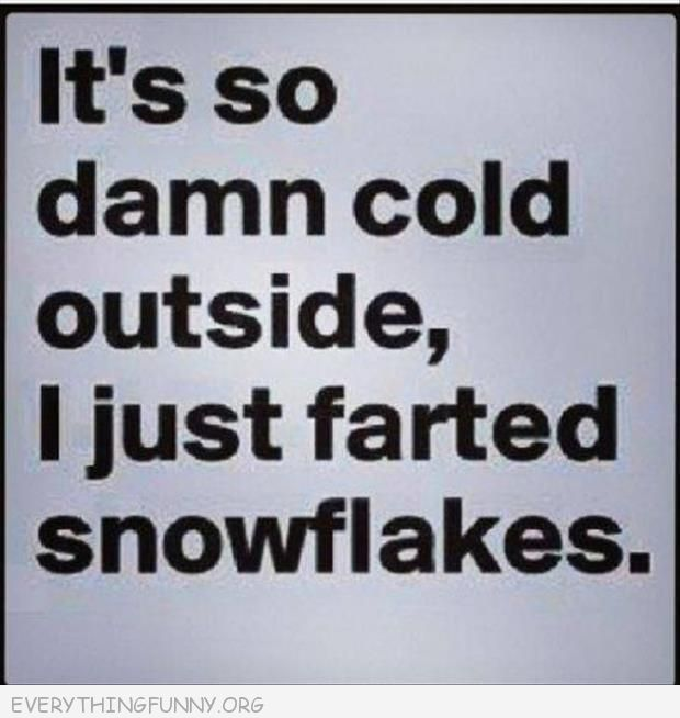 funny quote it's so damn cold outside i just farted snowflakes