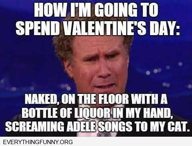 funny will farrell how i'm going to spend valentines day