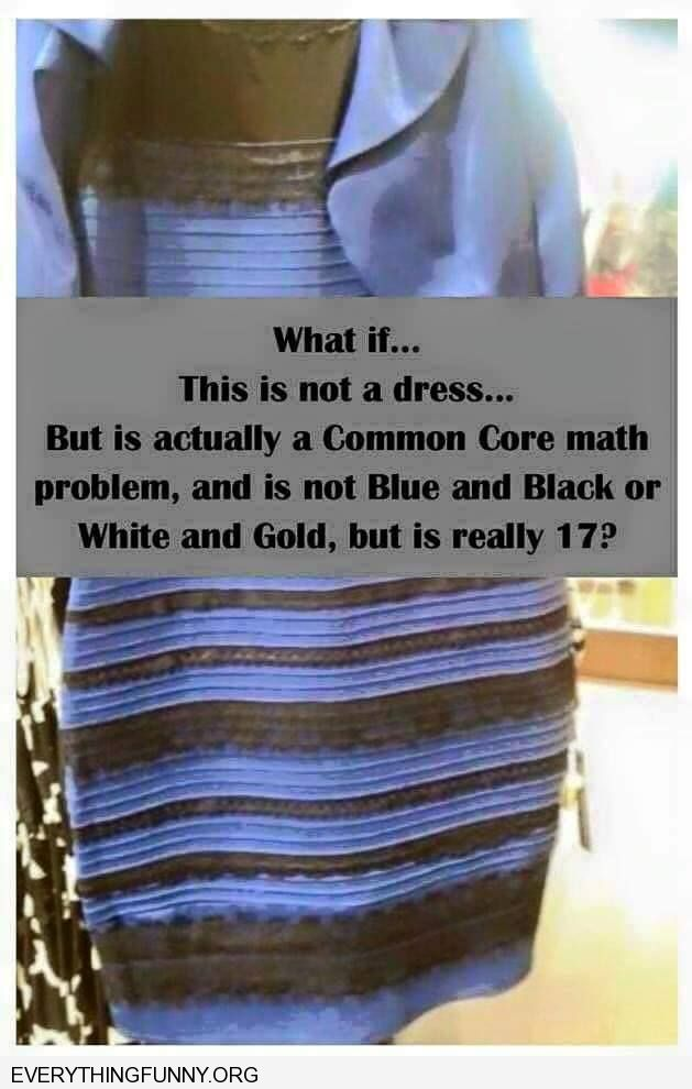 funny what is this is not a dress but a common core math problem and is really 17 white gold blue black dress picture