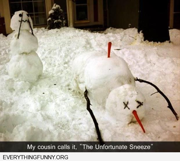 funny caption snowman killed by the unfortunate sneeze carrot in back from other snowman