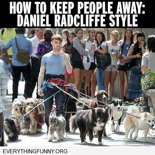 funny captions how to keep people away daniel radcliff style 15 dogs tied to his waist