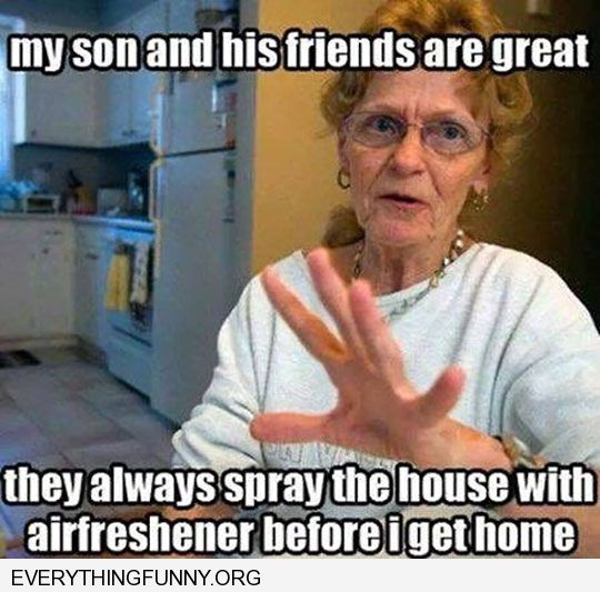 funy caption my son and friends are great always spray air freshener before i get home