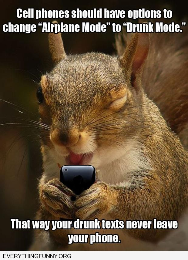 funny caption squirrel cell phones should have drunk mode options where drunk texts never leave