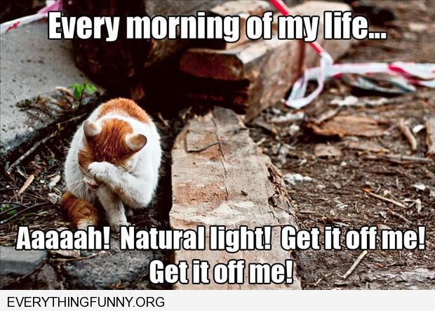 funny caption every morning of my life natural light get it off get it off