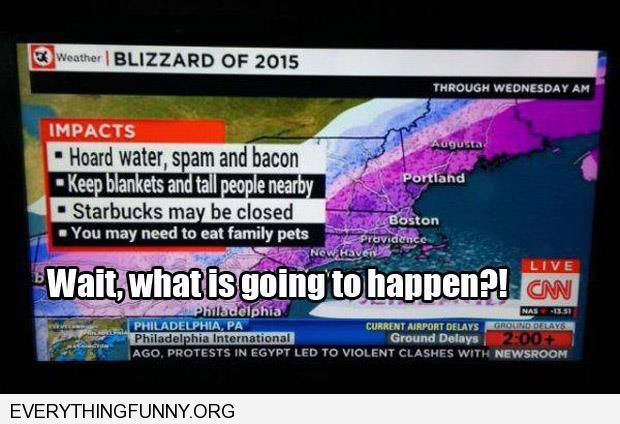 funny caption newscast blizzard 2015 may need to eat family pets