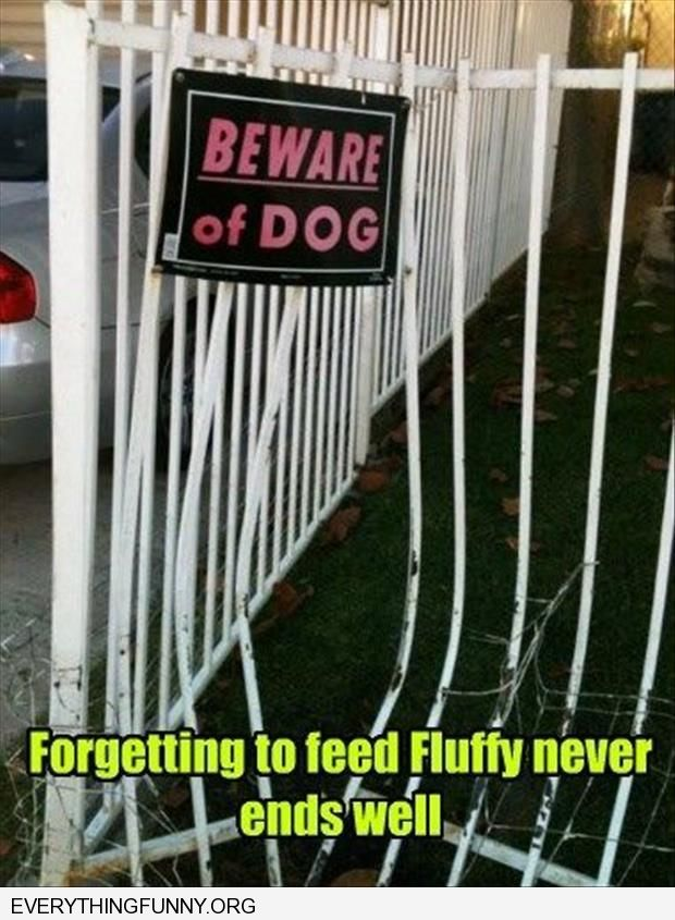 funny beware of dog bent fence forgetting to feed fluffy never ends well