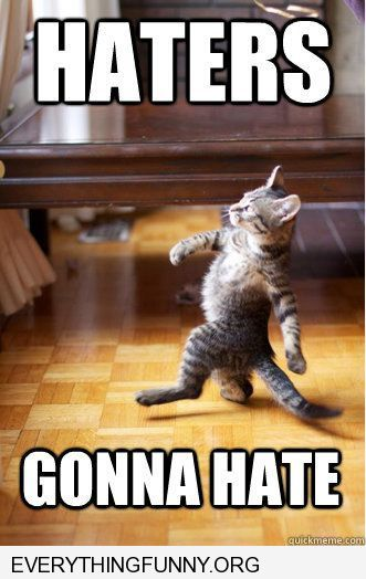 funny cat pictures walking on hind legs haters goinna hate