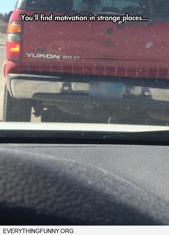 funny bumper sticker Yukon do it finding inspiration in the strangest places