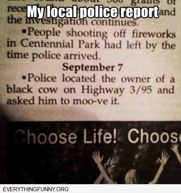 funny caption my local police report found cow told them to moo-ve it