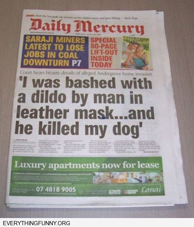 funny newspaper headline i was bashed with a dildo by man in leather mask and he killed my dog