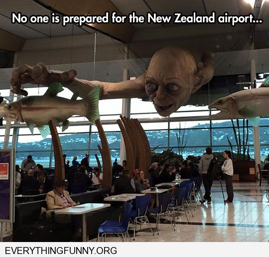 funny no one is ready for the new zealand airport