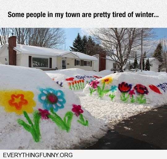 funny spray painted flowers on snow waiting for spring had enough of winter