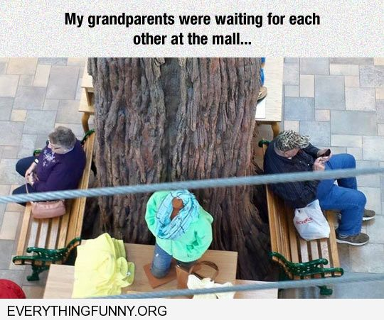 funny caption grandparents waiting for each other on wrong side of tree different benches in mall