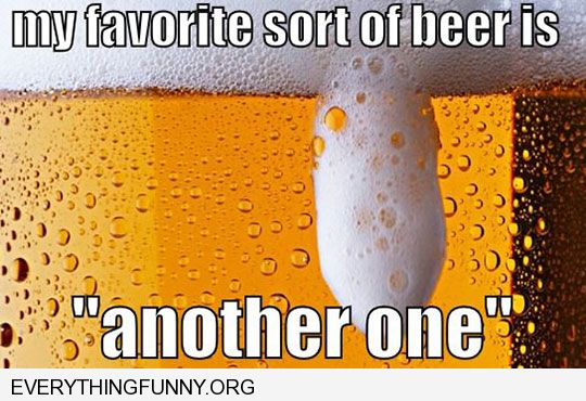 """funny caption my favorite sort of beer is """"another one"""""""