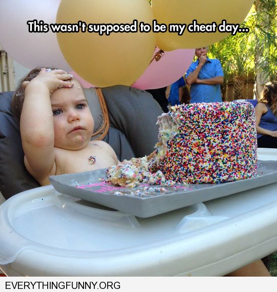funny caption baby eating huge cake this wasn't supposed to be my cheat day