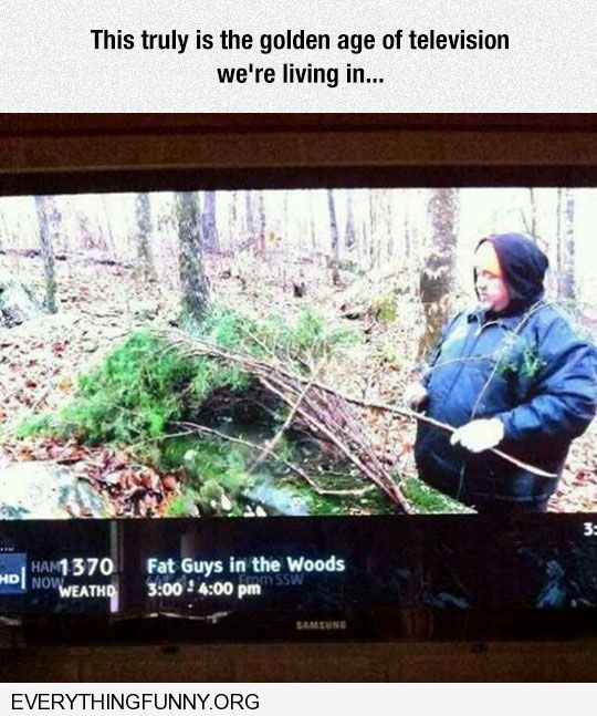 funny caption television show named called fat guys in the woods golden age of television that we are in