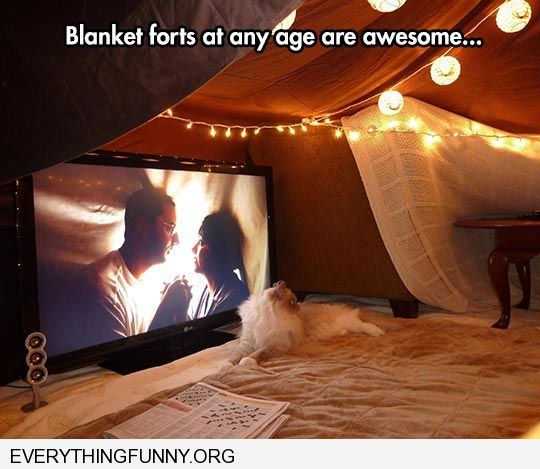 funny caption blanket forts are cool at any age