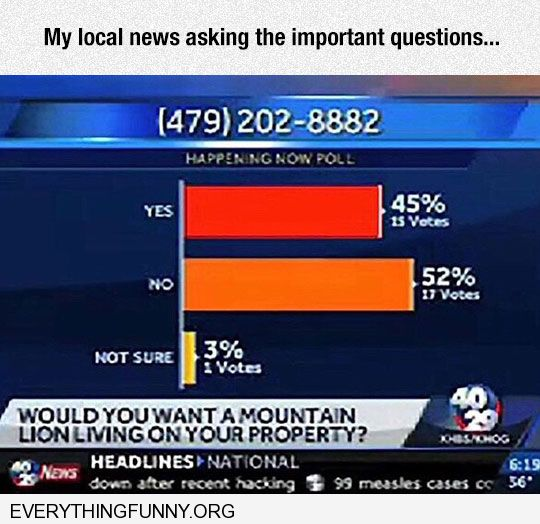 funny news poll would you want a mountain lion living on your property