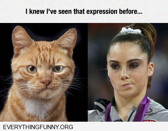 funny gymnast face and cat face i've seen that expression before