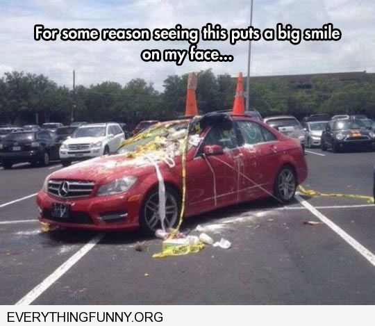 funny caption people egg and tp car that took up 4 parking spaces