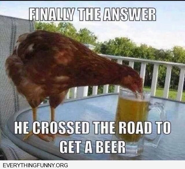 funny caption finally the question is answered the chicken crossed the road to get a beer