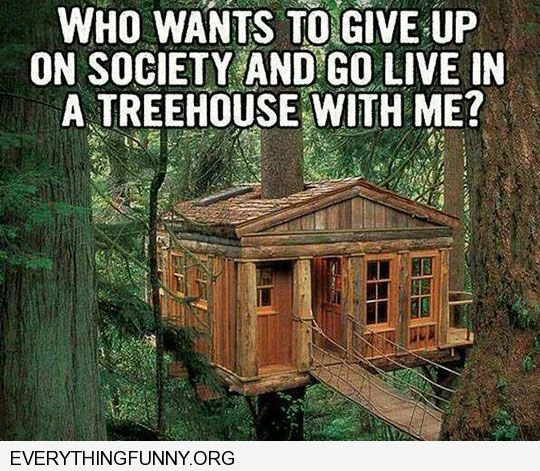 funny cation who wants to give up on society and live in a treehouse with me