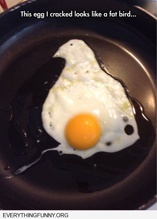 funny caption fried egg in fyring pan looks like chicken what might have been