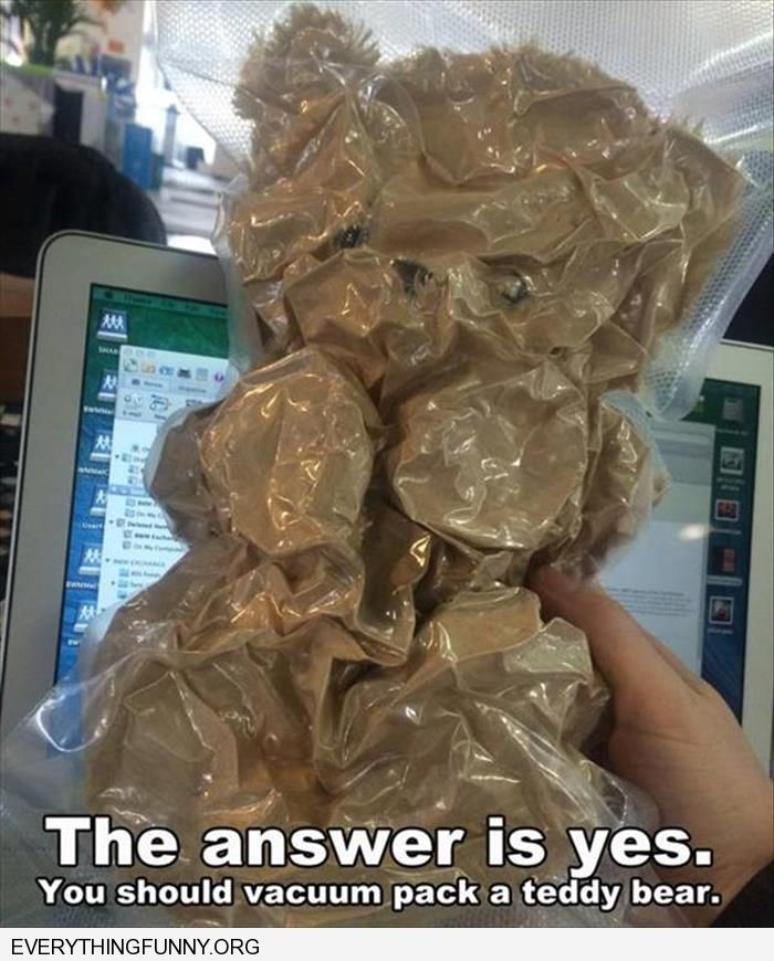 funny caption the answer is yes you should vacuum pack a teddy bear