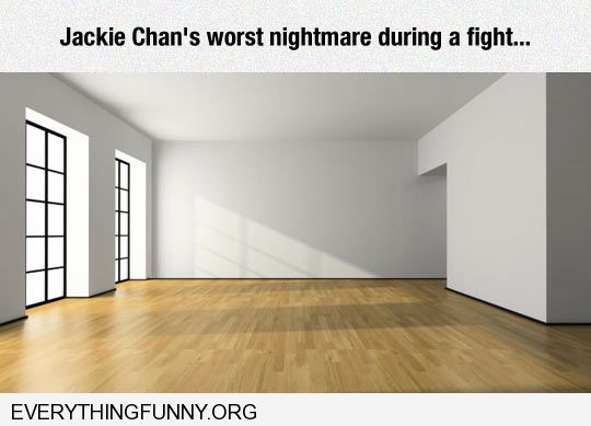 funny cation jackie chans worst nightmare big empty room no furniture to jump on or use for fighting