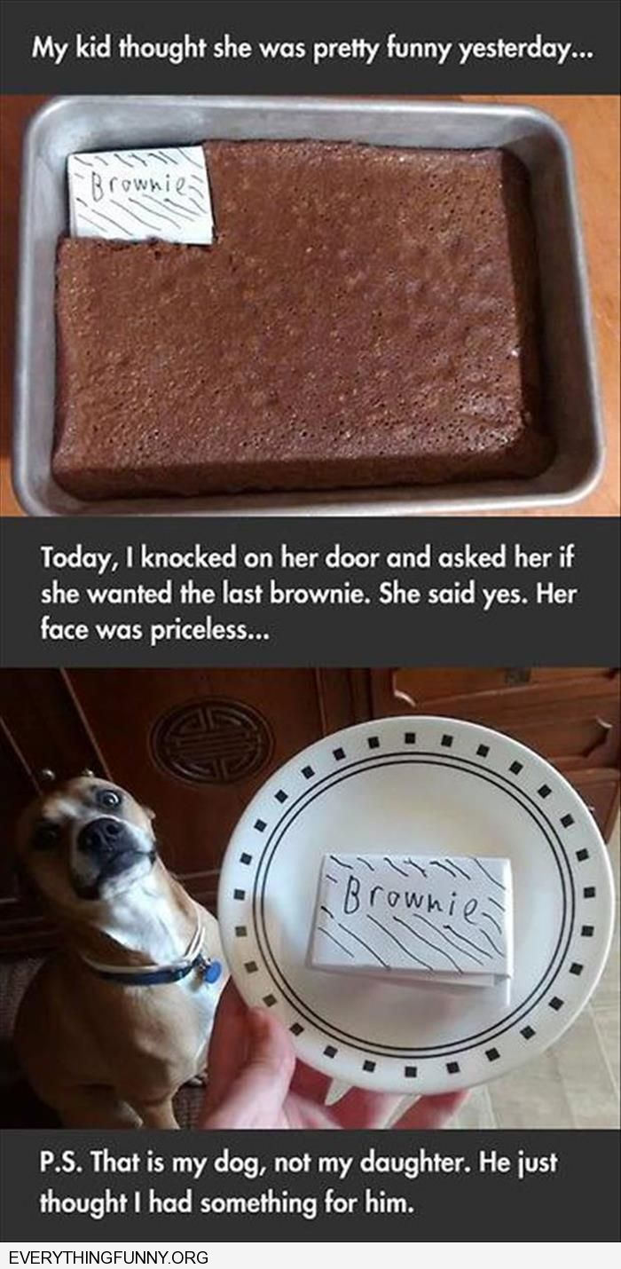 funny caption kid steals brownie replaces with paper mom gives last brownie which is piece of paper